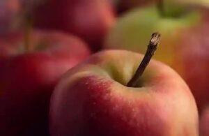 apples paleo fruits